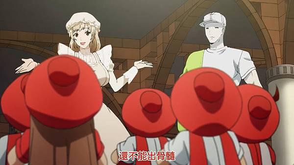 2 紅血球生成3(Culture).jpg