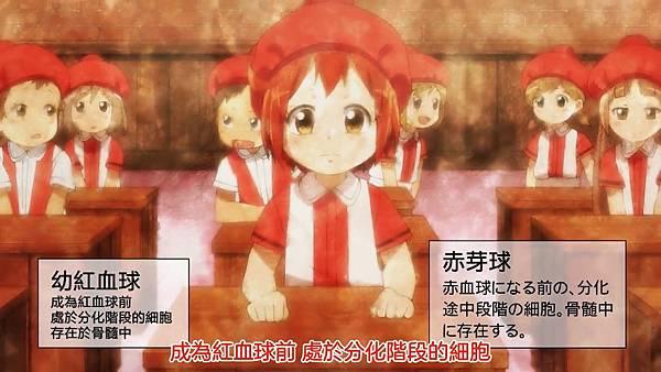 2 紅血球生成2(NRBC).jpg