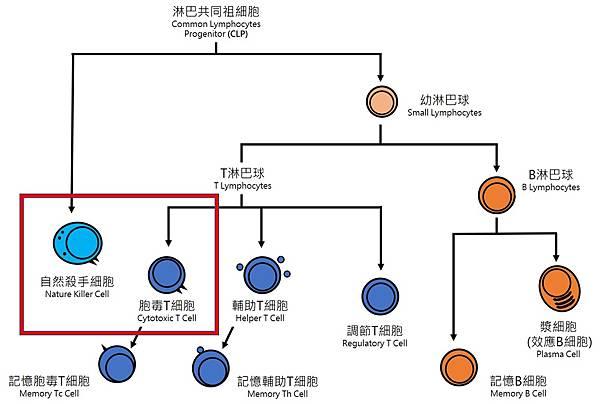 Cytotoxics.jpg