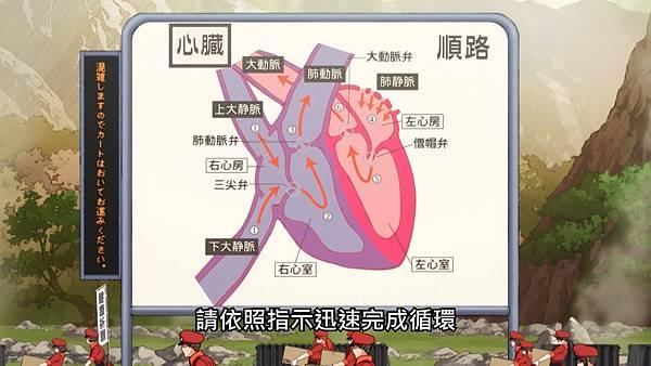 0 心臟總圖.jpg