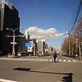 IMG_9551.jpg
