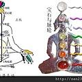 人體的能量系統