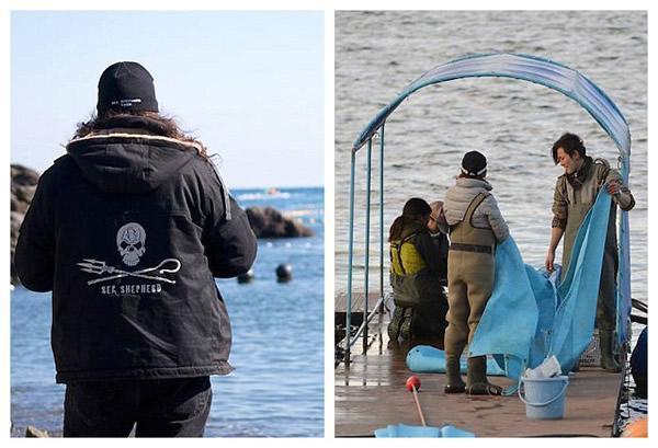日本渔民囚禁大量海豚6.jpg