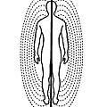 圖1c-以2D的方式呈現人類的兩極磁場.jpg
