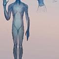 Blue Avian的描繪圖,由畫師Android Jones經由Corey描述所繪2.jpg