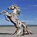 朽木可雕也 3.jpg