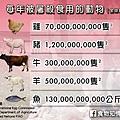每年被屠宰來食用的動物.jpg
