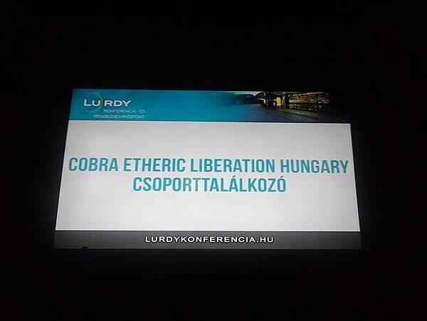 共90個人在布達佩斯參加了匈牙利的第一場實體聚會.jpg