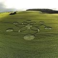 英國Fonthill Down出現的麥田圈和台灣出現的雲船是昴宿星人的傑作1.jpg
