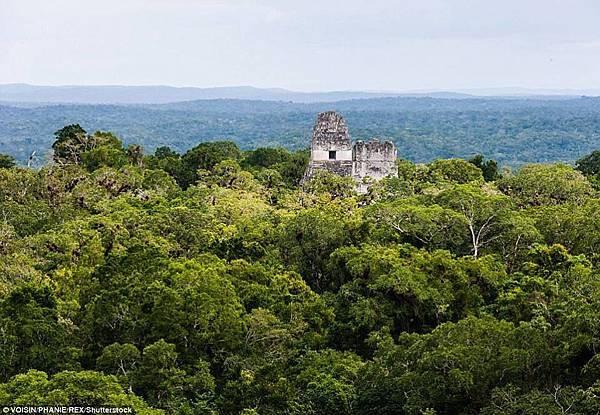 中美洲叢林發現瑪雅巨大古城6-過去兩年裡發現了6萬個建築物.jpg