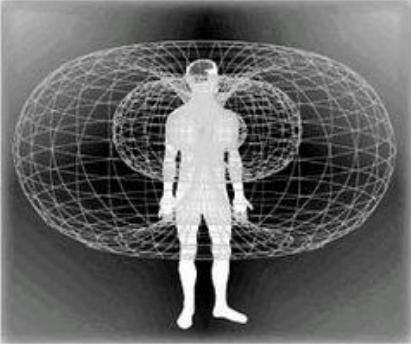人類的腦波.png