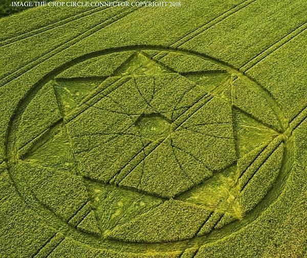 2018-6-20 英國威爾特郡「魔鬼巢穴」邊的七角星麥田圈1.jpg