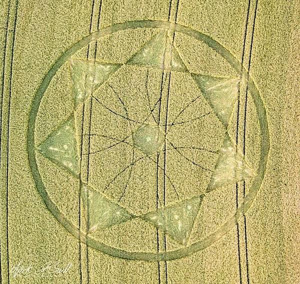 2018-6-20 英國威爾特郡「魔鬼巢穴」邊的七角星麥田圈5.jpg