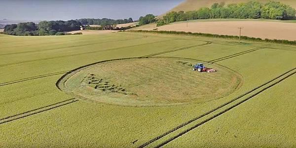 2018-7-7 英國威爾特郡引發真假爭議的麥田圈13.jpg
