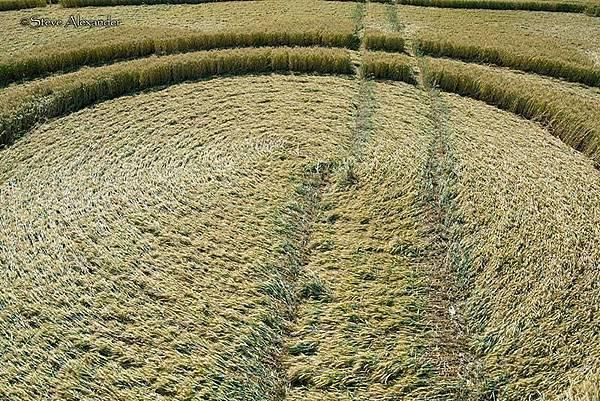 2018-7-10 英國漢普郡九重幾何形狀的麥田圈8.jpg