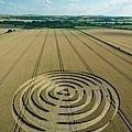 2018-7-14 英國威爾特郡宛如輻射狀的麥田圈1.jpg