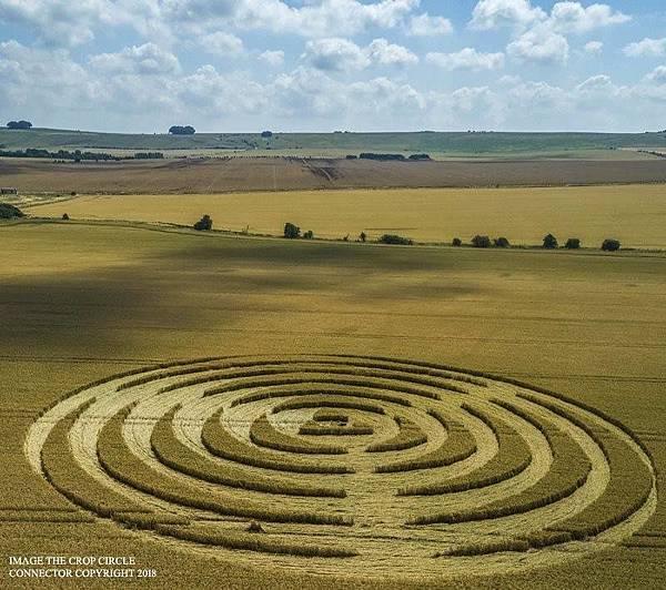 2018-7-14 英國威爾特郡宛如輻射狀的麥田圈2.jpg