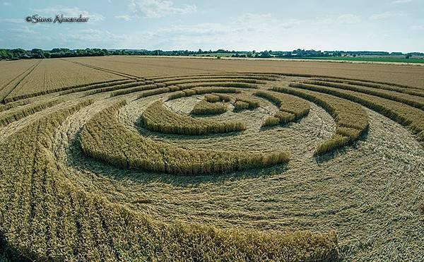 2018-7-14 英國威爾特郡宛如輻射狀的麥田圈8.jpg