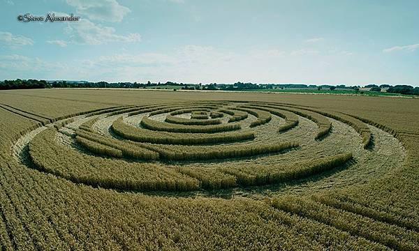 2018-7-14 英國威爾特郡宛如輻射狀的麥田圈10.jpg