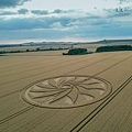 2018-7-21 英國威爾特郡如12瓣紙風車的麥田圈2.jpg