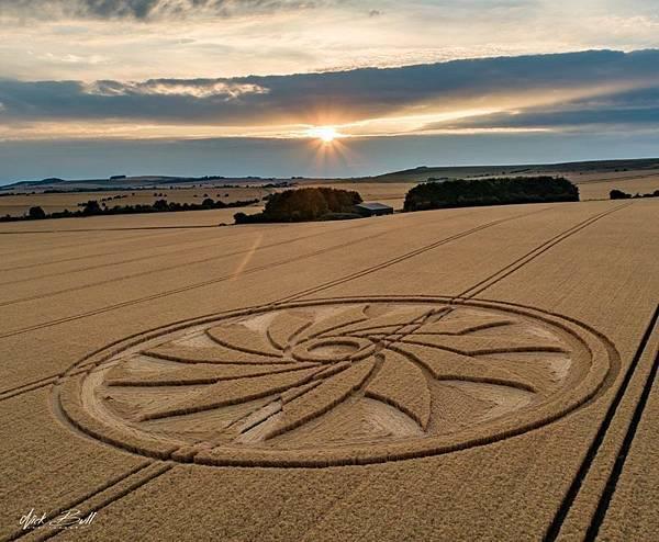 2018-7-21 英國威爾特郡如12瓣紙風車的麥田圈4.jpg