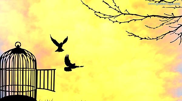 自由之鑰全球冥想.png