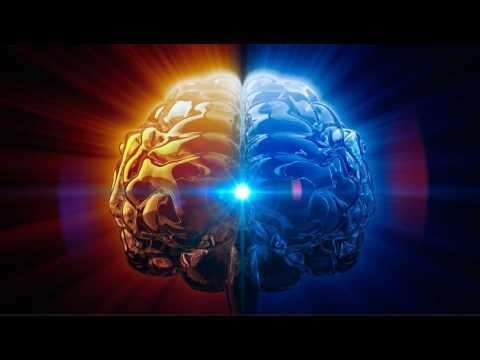 大腦松果體 2.jpg