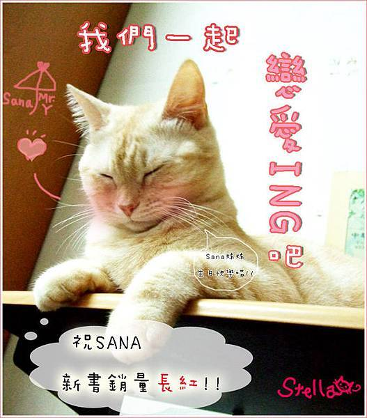 20080217_stella_生日賀圖
