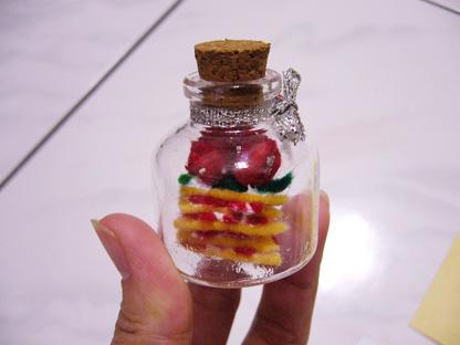 20080217-國際書展簽書會-小倩送的瓶中不織布蛋糕