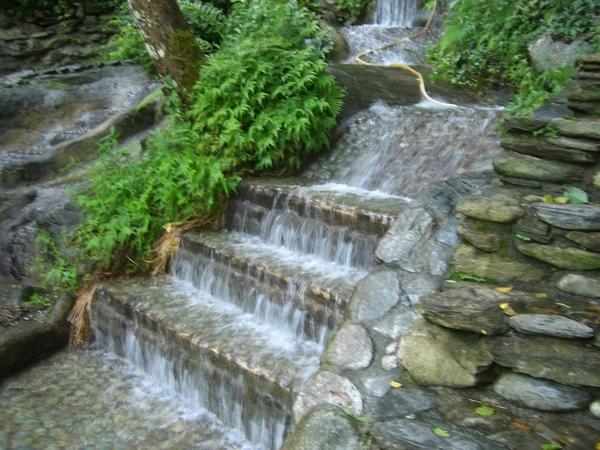 知本森林遊樂區內的水流腳底按摩步道,可以走在水裡唷