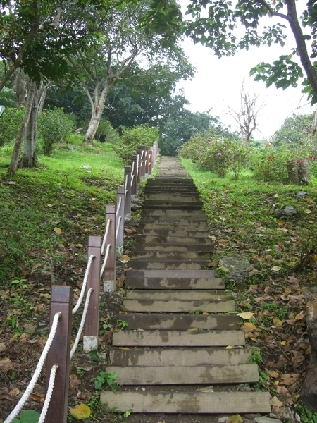 知本森林遊樂區好漢坡,長雖僅320公尺,但落差卻有150公尺