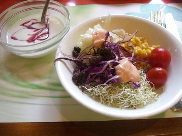 藍莓優格,生菜沙拉,但優格味道不太好