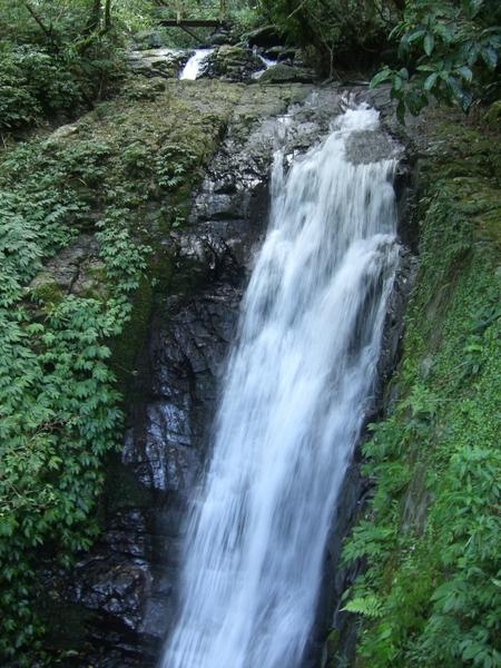 步道裡有瀑布跟溪流,還可以玩水喔!十分涼快。