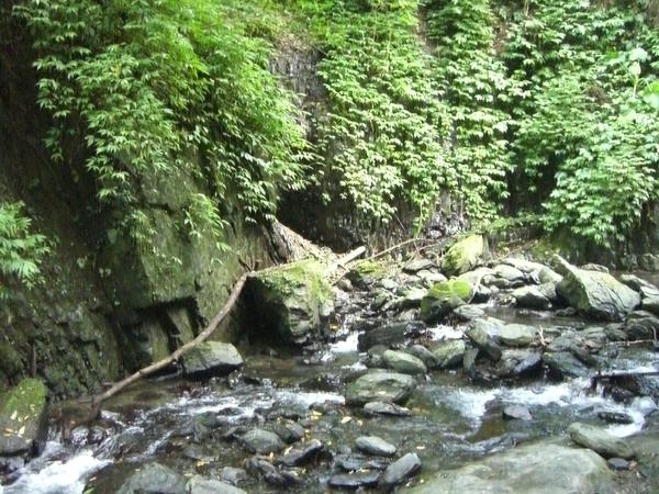 林美磐石步道內,走起來是一個十分涼爽的步道,可能也是因為人少的關係