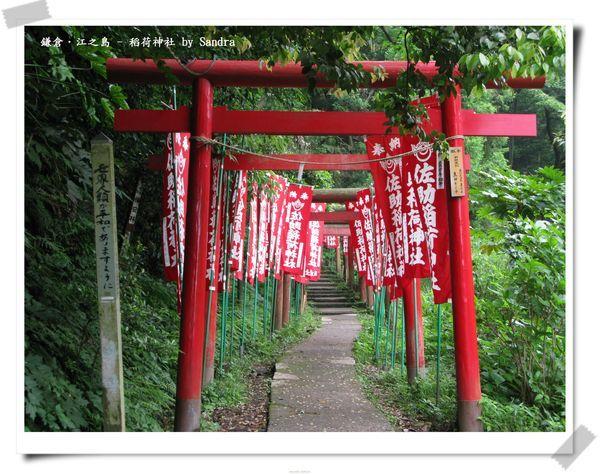 日本自由行 264.jpg