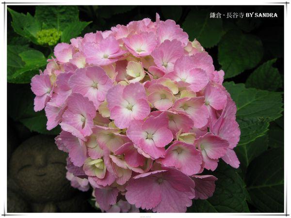 日本自由行 346.jpg