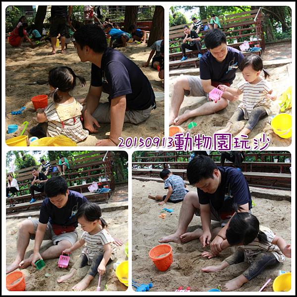 0913動物園玩沙.png