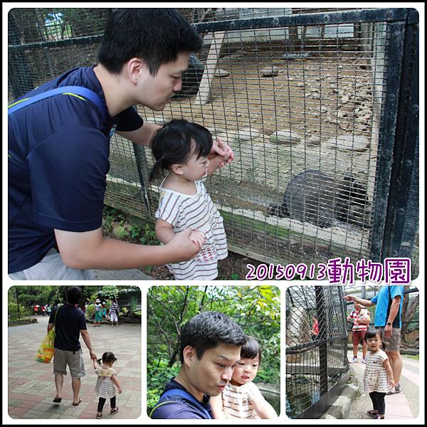 0913動物園玩沙2.png