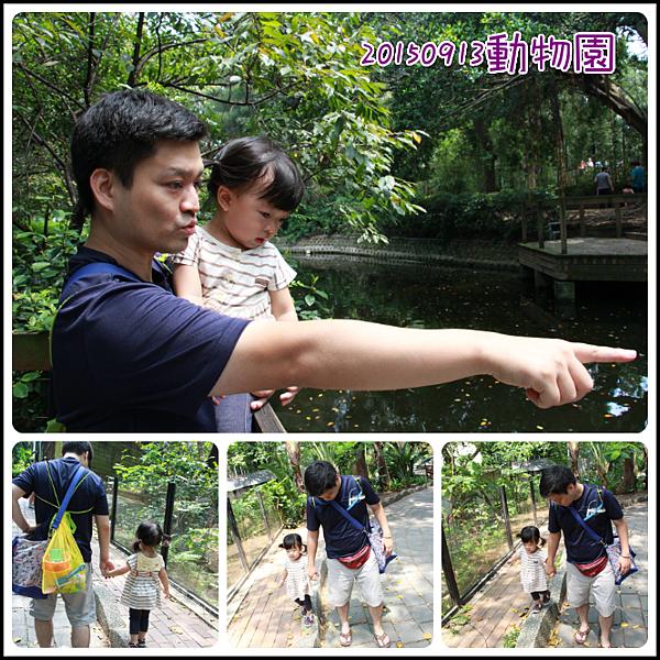 0913動物園玩沙3.png