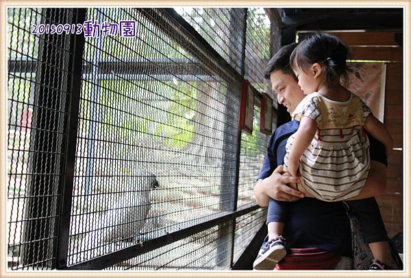 0913動物園玩沙4.png