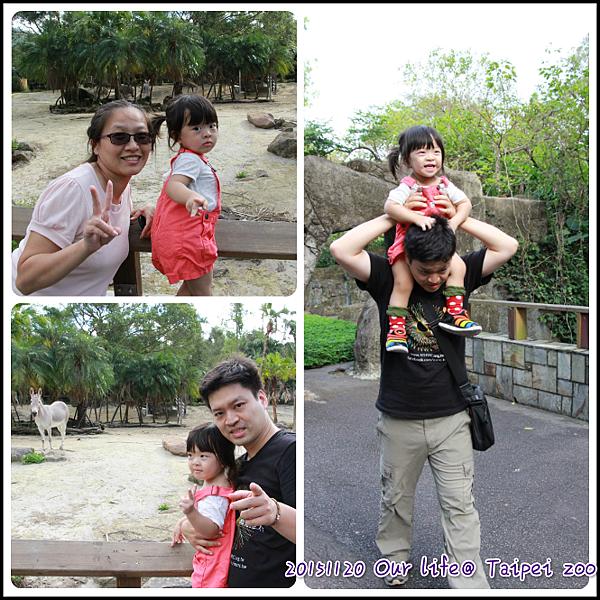 1120Taipei zoo.png