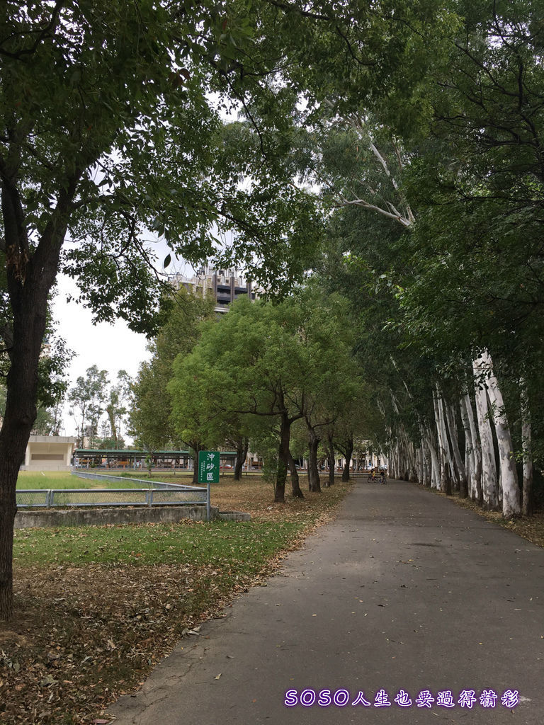 頭份公園7.jpg