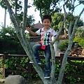 IMG_20141019_145044.jpg