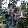 IMG_20141019_145228.jpg