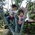 IMG_20141019_145230.jpg