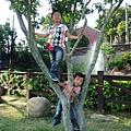 IMG_20141019_145411.jpg