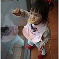2013.11.03-南方莊園-15