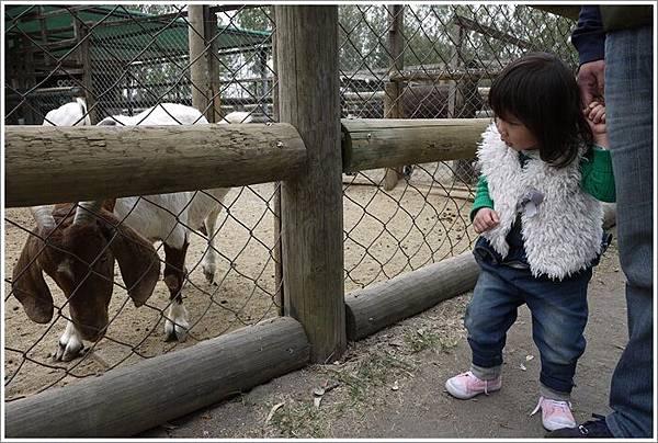 2014.03.10_台南頑皮世界_9.JPG
