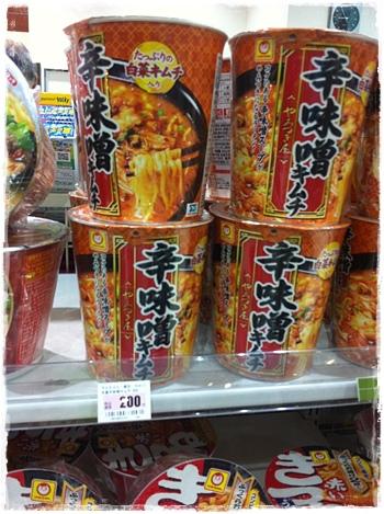 日本-2014.06.17-21-30.JPG