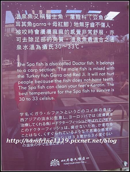 nEO_IMG_1201 (268)